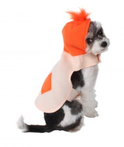 If you enjoy Halloween and dressing up your furry companions we are giving away one of each of these AKC Troll dog costume a snazzy ghost bowtie and a ...  sc 1 st  Pet Companion Magazine & Halloween Costumes u2014 Win One! | Pet Companion Magazine