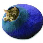 Pet Companion Mag