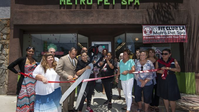 Metro Pet Spa & Fitness Centers and K9 Fit Club® Los Angeles Grand Opening Celebration. Photo credit: Angela Chen Photography email:  acpeters@charter.net website:www.angelachenphotography.com