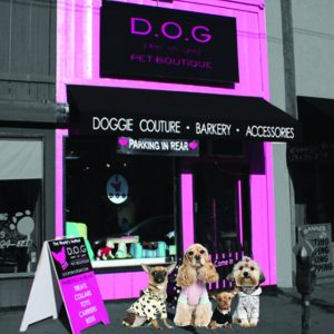 D.O.G. Pet Boutique
